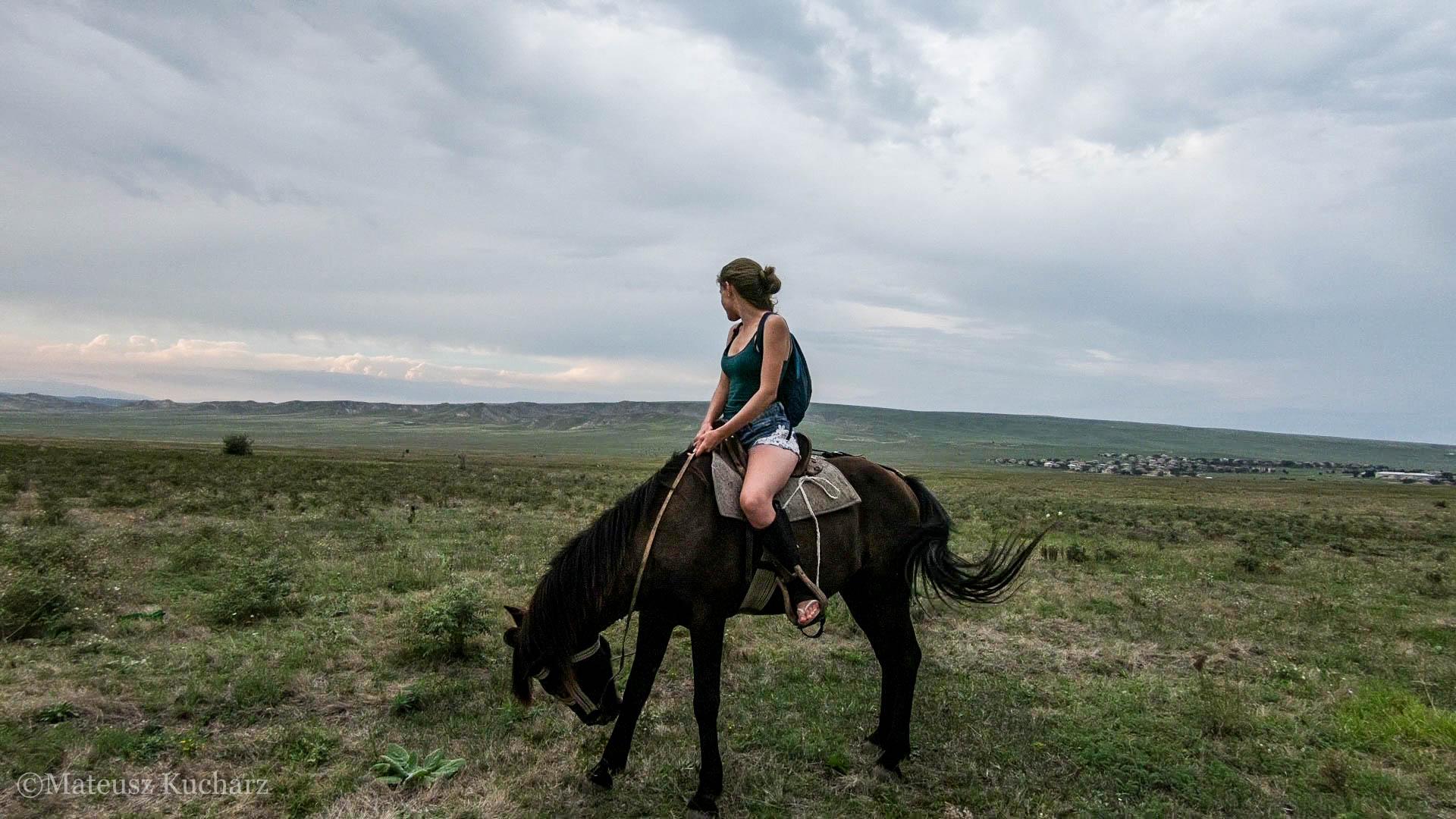 Zrobieni w konia…przez pół-dzikiego konia – przebiegłe ogiery z Udabno